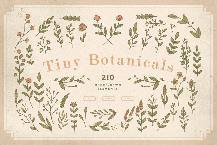 Tiny Botanicals | Wild Flowers Pack