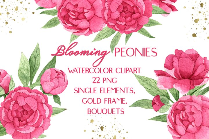 Pink Peonies Watercolor Floral Clipart