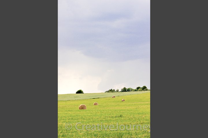 Summer field with hay