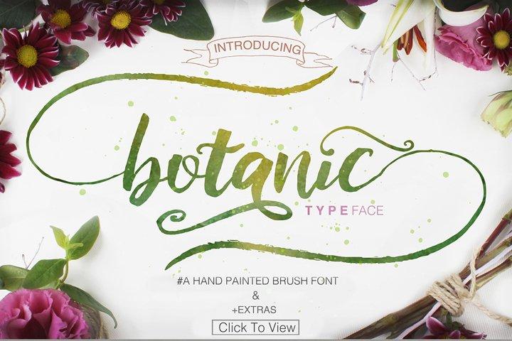 Botanic Swashes Font & Extras