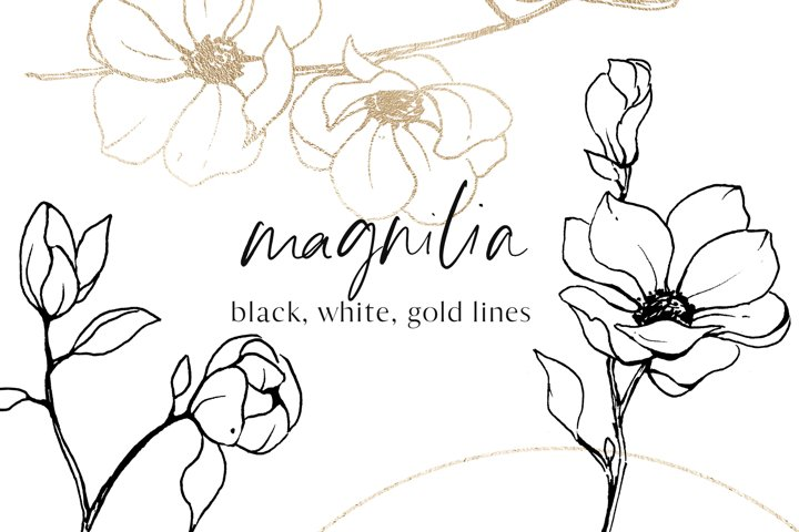 Magnolia black, gold, white line art, floral sketches set.