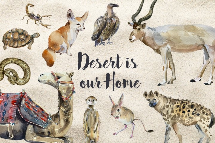 Desert Animals - Watercolor Clip Art and Poster