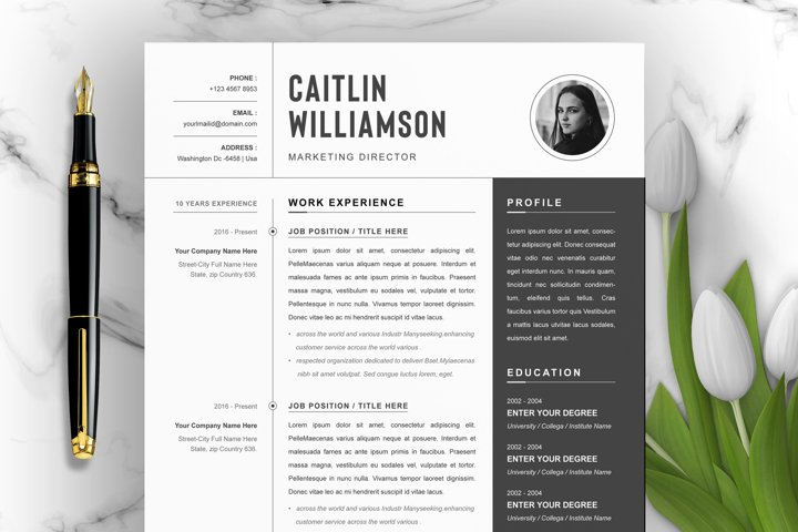 Professional Resume Template | Word
