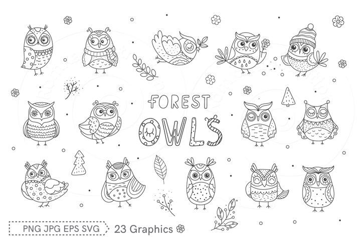 Clip art Forest Owls