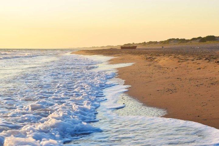 Sea wave on a sandy beach at sunset.