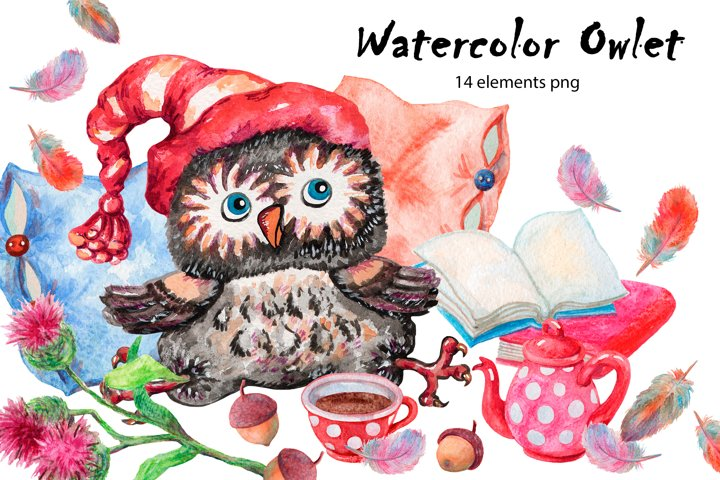 Owlet. Watercolor clipart collection.