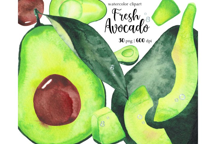 Watercolor Avocado Clipart