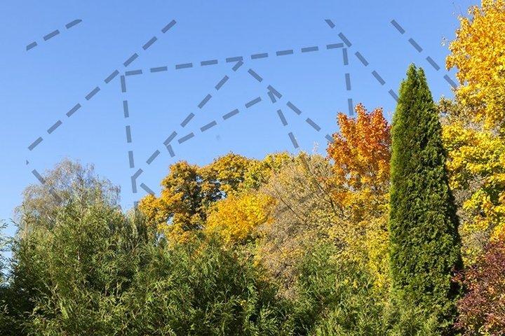 30 photos of the autumn season