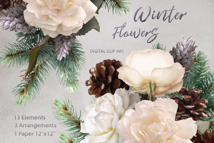 Christmas clipart. Pine and white roses.