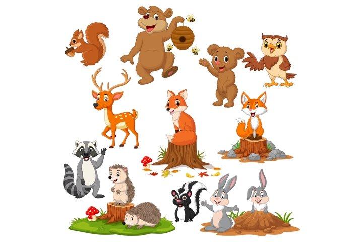 Autumn Forest Animal Bundle