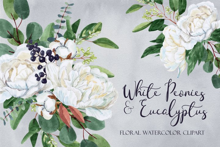 White Peony & Eucalyptus Floral Watercolor Clipart