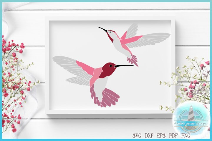Hummingbird SVG | Humming Bird Cut File | Bird SVG