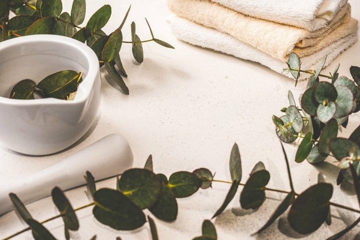 Spa concept with fresh eucalyptus