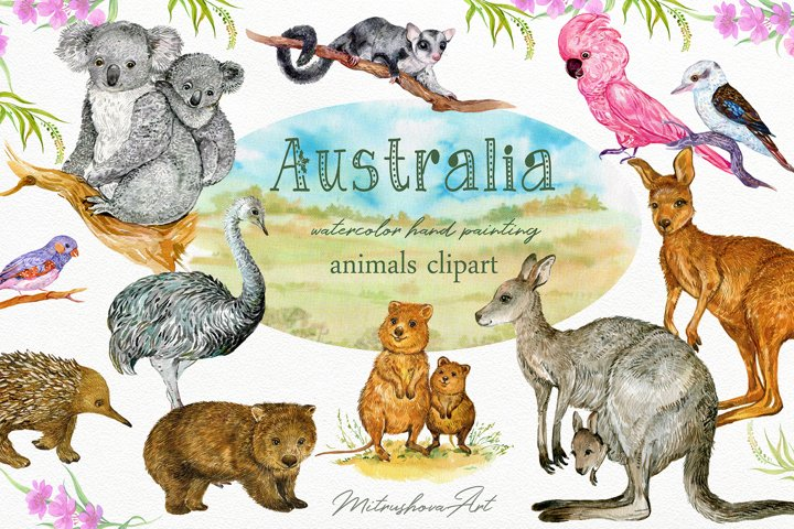 Animals Australia Watercolor