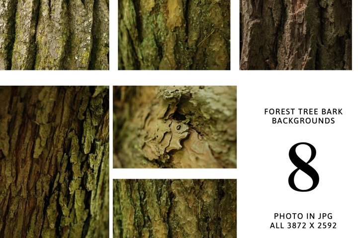 8 digital backgrounds - forest bark of tree