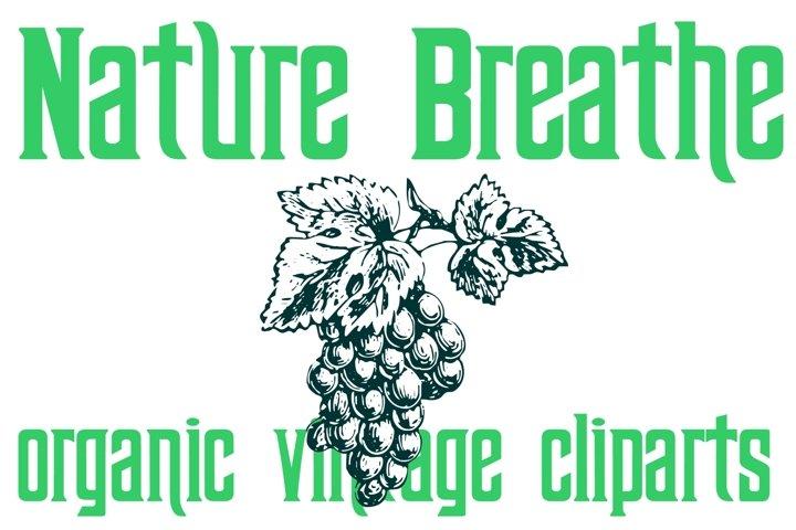Nature Breathe