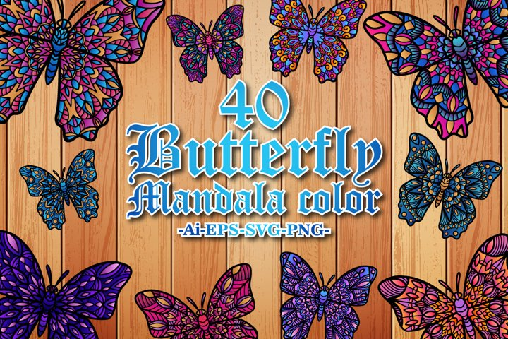 Butterfly mandala Color