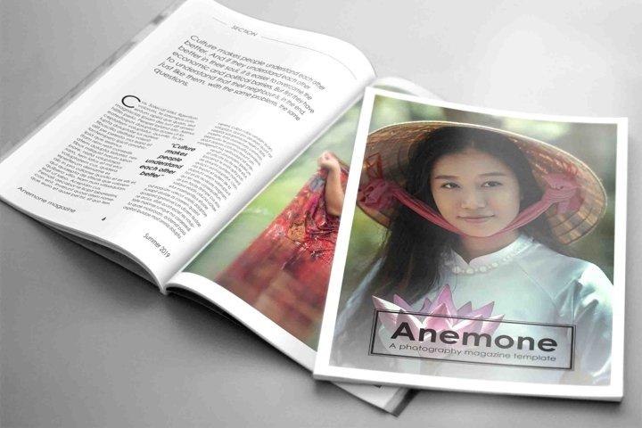 ANEMONE - A Visual Stationary Template