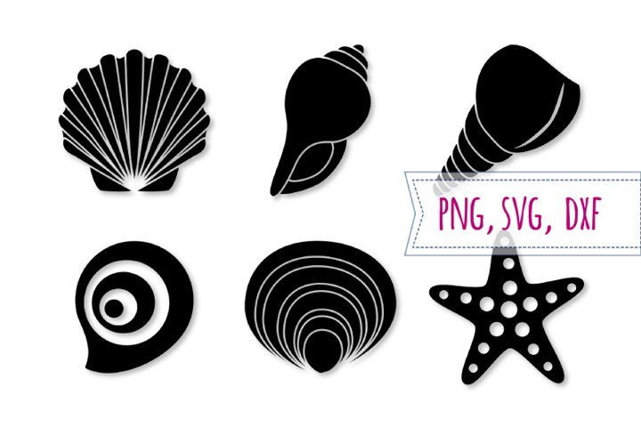Shell svg set. Starfish svg. Seashell clipart, beach