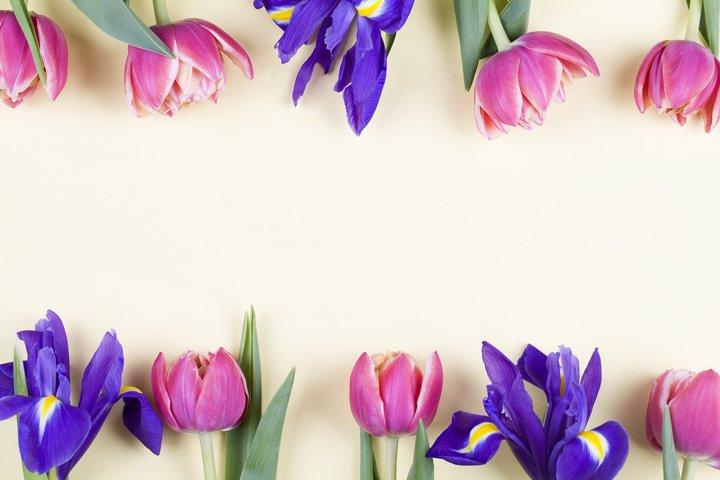 Beautiful spring flowers. red tulips and purple irises