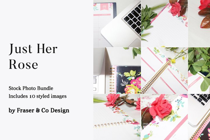 Just Her Rose - Stock Photo Bundle