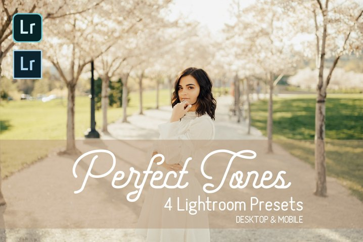 Perfect Tones Lightroom Presets. Desktop & Mobile
