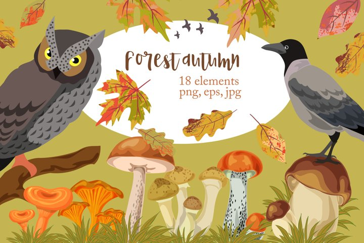 Forest autumn clipart. Owl and crow, mushrooms and leaves