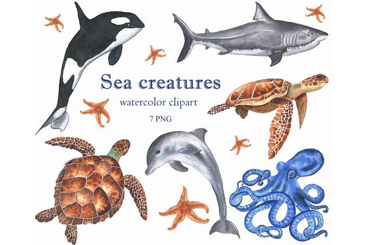 Watercolor sea creatures clipart.