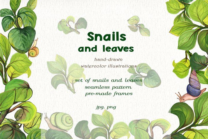 Snails and leaves