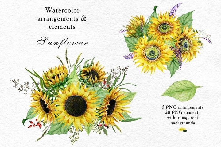 Watercolor Sunflower arrangements, Floral eleme