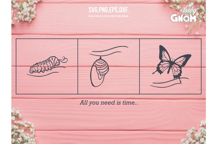 All you need is time SVG, Butterfly svg, Cocoonsvg, Worm svg