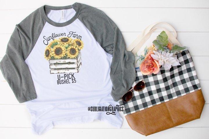 Sunflower Field Sublimation Digital Download