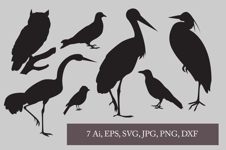 Birds svg bundle. Bird Silhouette. Bird clipart. Bird PNG.