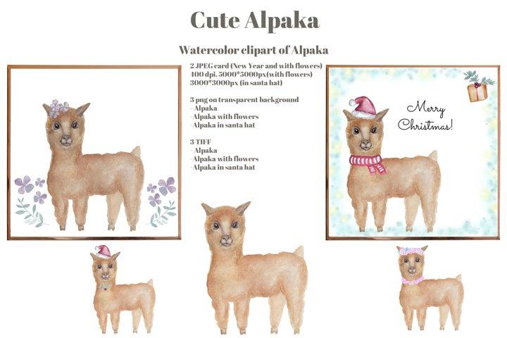 Cute llama alpaca clipart. Watercolor set. Printable design