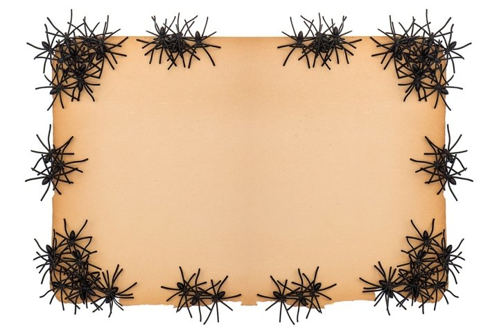 Paper background with black spider. Halloween decoration