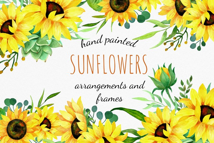 Sunflowers watercolor clipart, bouquets and frames