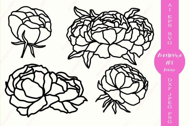 Peony flowers svg, Floral svg, Peonies silhouette dxf