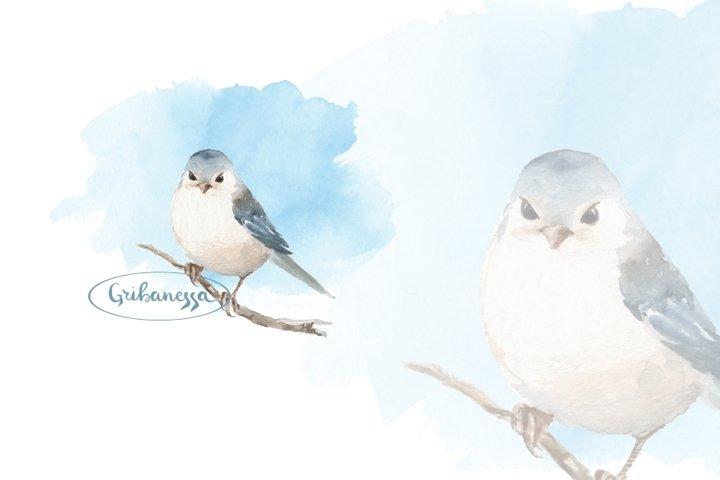 Cute watercolor bird