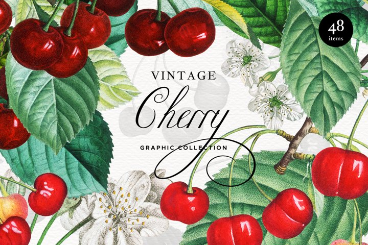 Vintage Red Cherry Elements, Arrangement, Seamless Patterns
