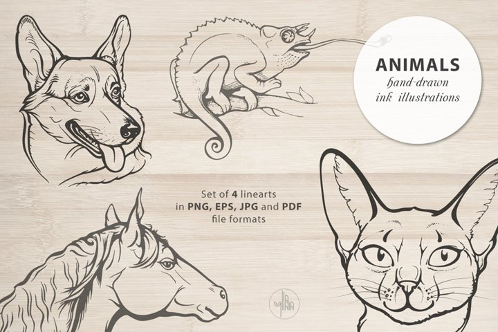 Animals, Set of 4 ink illustrations of pets, Vector clip art
