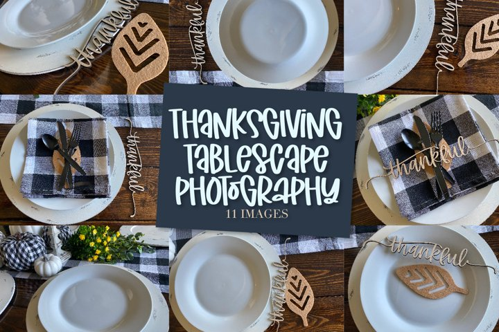 Thanksgiving Table Stock Photography - 11 Images Bundle