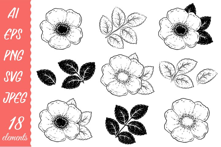 Hand drawn wild roses. Fill and outlined.