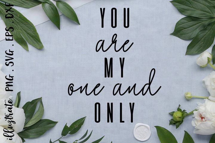 You are my one and only SVG Cut File | Valentines SVG example