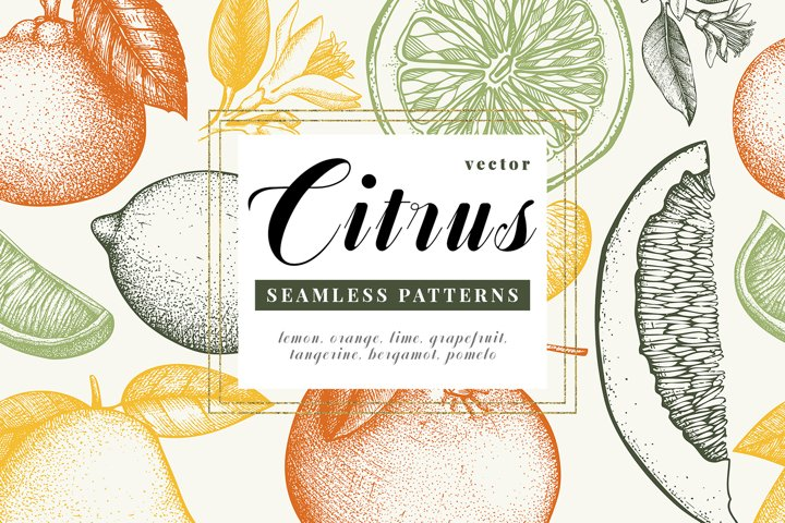 Citrus Fruits Patterns Collection