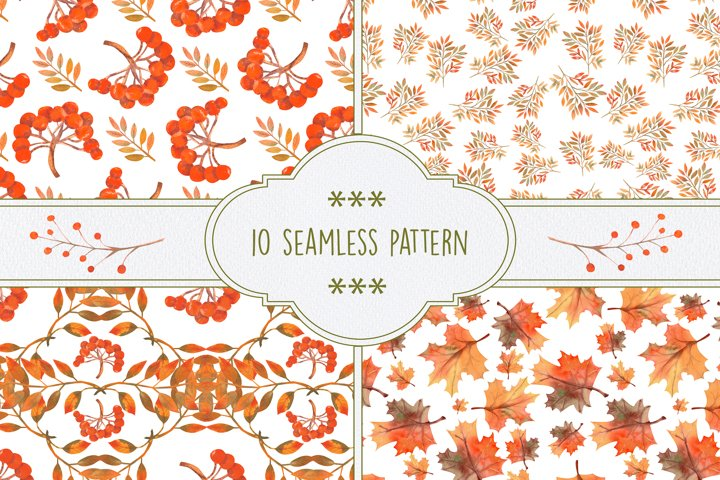 Seamless patterns with wildflowers, thistles, prickly leaves