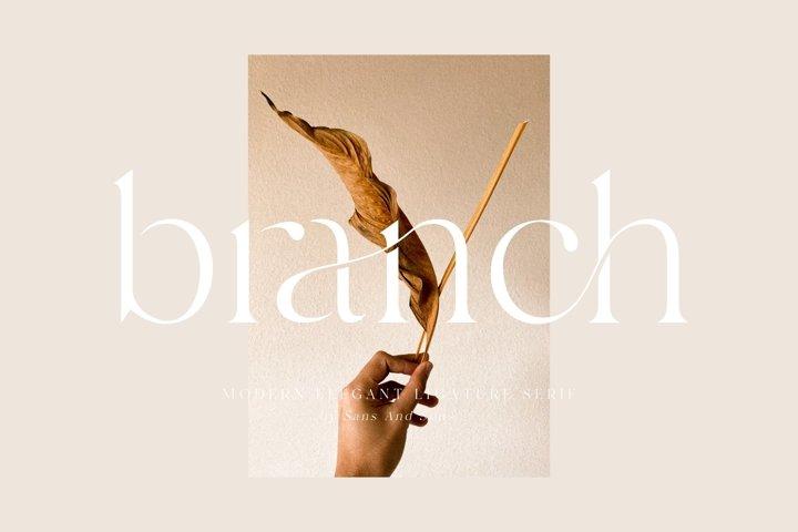 Branch - Elegant Ligature Font