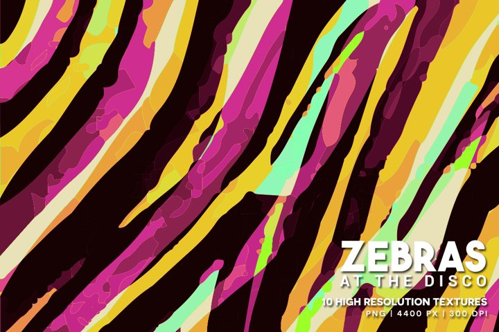 Zebras at the Disco