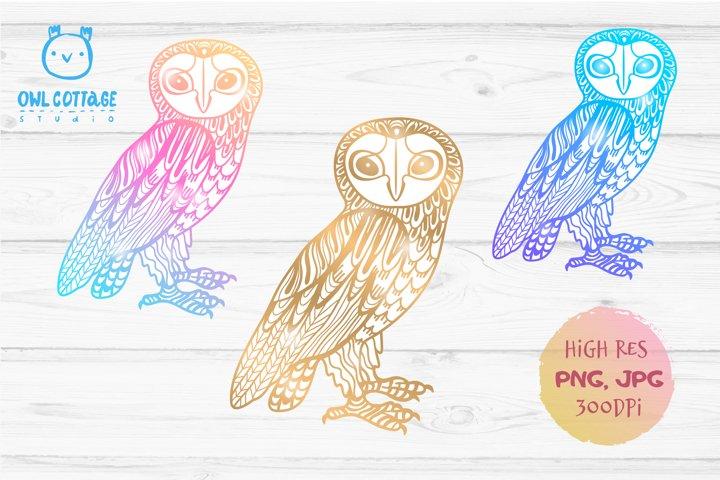 Barn Owl Sublimation Design, Owl PNG, Decorative Owl Tattoo
