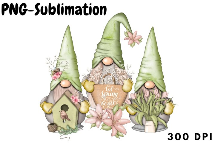 Spring Gnomes Png Sublimation