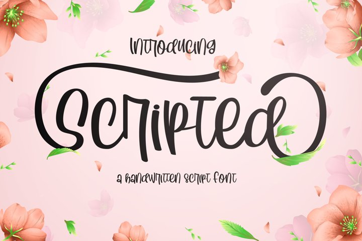 Scripted Handwritting Font